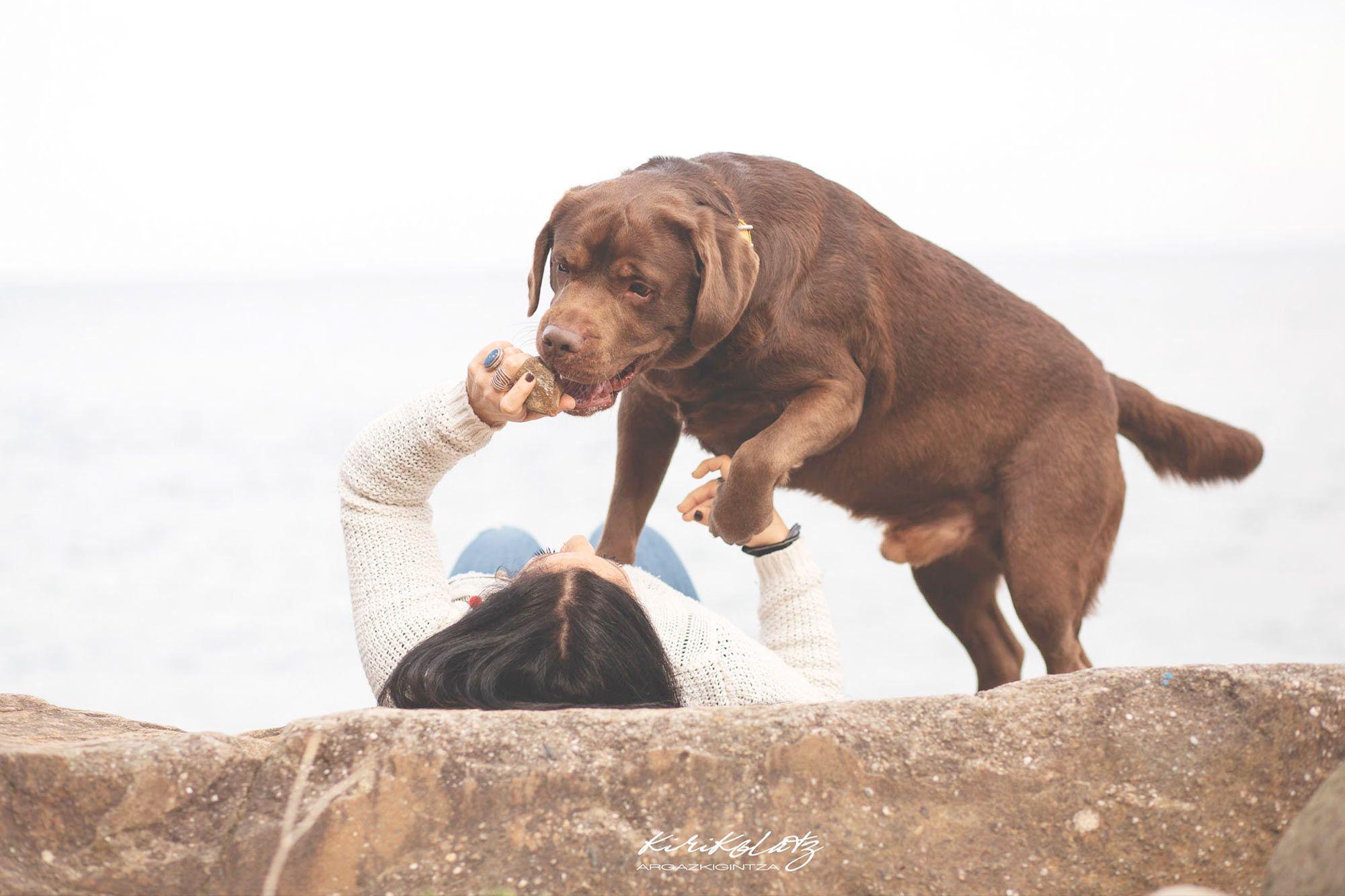 Fotos Exteriores Mascotas